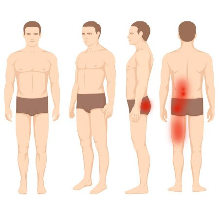 Stawy międzywyrostkowe kręgosłupa u kierowców