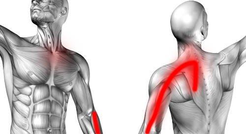 Ból kręgosłupa między łopatkami