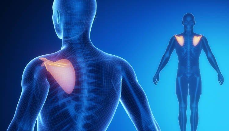 Ból pleców między łopatkami – objawy, przyczyny